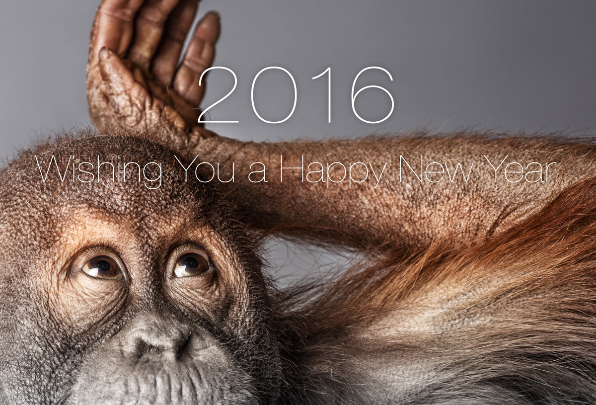 2016 Wishing you a happy new year